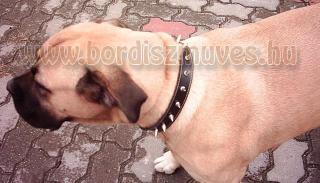 SugoDog® Hegyes szegeccsel kivert egyedi bőr nyakörvek, pergős csattal, hegeszet