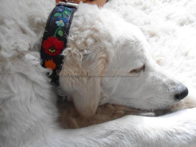 Hímzett kalocsai mintás marhabőr nyakörv, kuvasz kutyuson