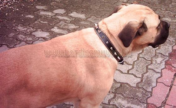 SugoDog® Hegyes szegeccsel kivert egyedi marhabőr nyakörvek, pergős csattal, heg